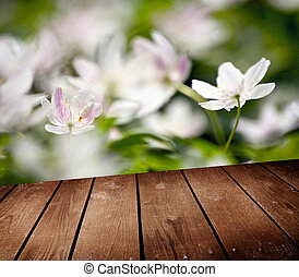 White anemone flowers and empty wooden deck table. Ready for...