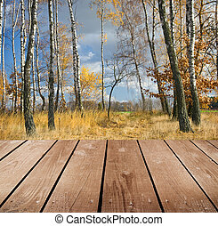 empty wooden deck table in the park. Ready for product...