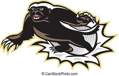 Honey Badger Mascot Jumping - Illustration of a honey badger...