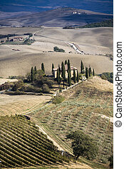 Tuscan Landscape. Val D\'Orcia, Tuscany, Italy.