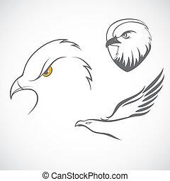 Eagles set - Vector illustration of Eagles set