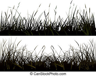 Silhouette meadow grass - Vector of isolated background of...