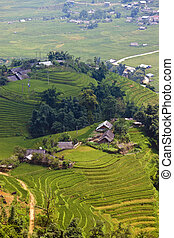 Paddy fields and small villages on a hills in northern...