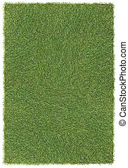 large grass background - very large piece of grass, isolated...