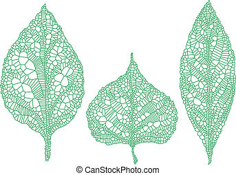 green leaf silhouettes, vector set - green leaves silhouette...