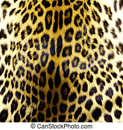 Leopard skin texture for background