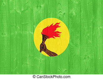Zaire flag - gorgeous Zaire flag painted on a wood plank...