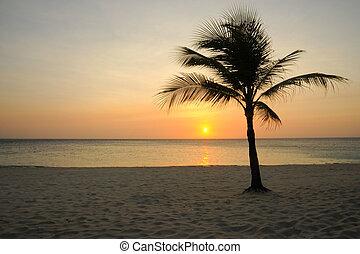 Roatan Sunset - Sunset on the beach on the Island of Roatan,...