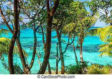 Trees and Turquoise Water - Turquoise water and trees in...