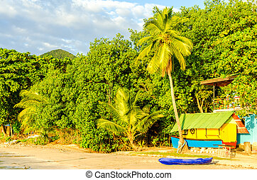 Caribbean Beach View - Colorful buildings on a beach in San...