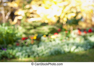 Defocused flower garden - Abstract blurred out of focus...