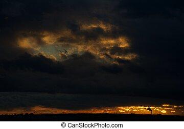 Smoking chimney at sunset (landscap
