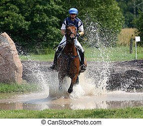 water - military, horse