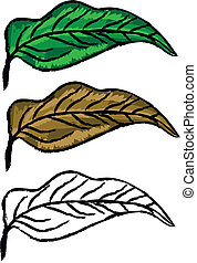 Hand drawn leaves - Three hand drawn leaves green, yellow...