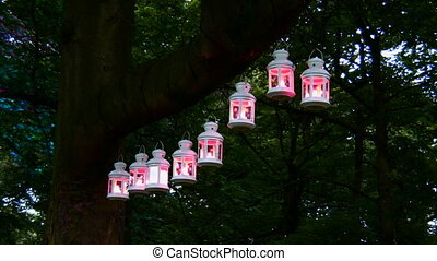 Magic lanterns - Lanterns hanging on the tree at night in...