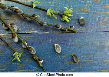 twig of lilac and pussy willow with buds on blue wood...