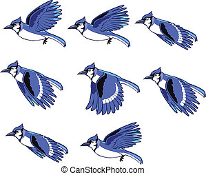 Blue Jay Animation Sprite for animation or game