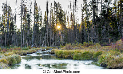 Sunrise on a mountain stream in fall
