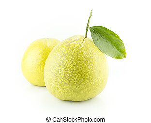 Bergamot oranges on white background