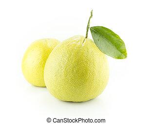 Bergamot oranges on white background