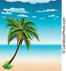Summer beach and palm