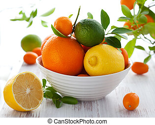 Mixed citrus fruit - Still life with oranges,...