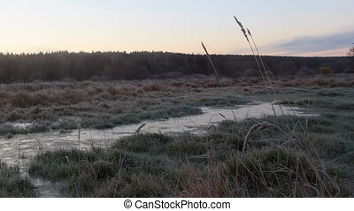 Dawn over the frozen swamp. Time Lapse