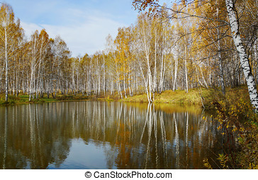 Beautiful autumn landscape at the pond