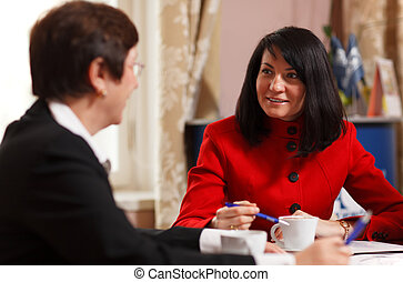 Two businesswomen in a meeting - Two businesswomen in a team...