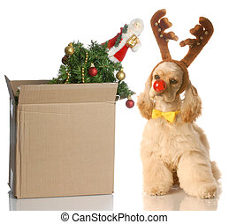packing up christmas