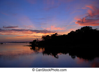Amazon riverbank - Mirrored sky and forest line on the Rio...
