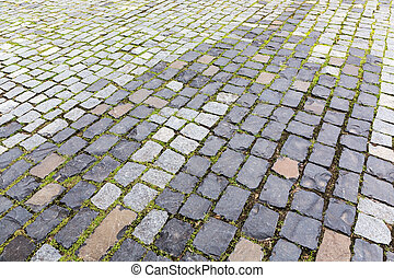 Pavement with grass