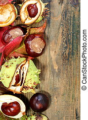 Horse chestnut and red leaves. - Autumn leaves and horse...