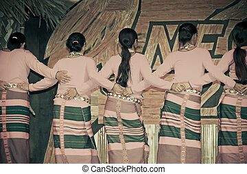 Traditional Dance of Adi tribes during Namdapha Eco Cultural...