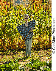 scarecrow - friendly scarecrow gardening in autumn
