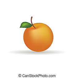 Tangerine - Abstract fruit with shadow effect on white...