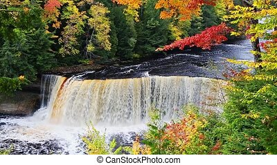 Autumn at Tahquamenon Falls Loop - Tahquamenon falls, a...