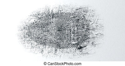 Dusted Crime Scene Fingerprint - An extreme closeup of a...