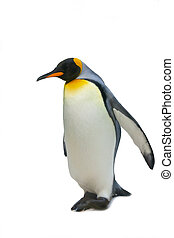 Big imperial penguin, it is isolated, a white background