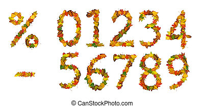 Numbers made of autumn leaves - Numbers, percent sign and...