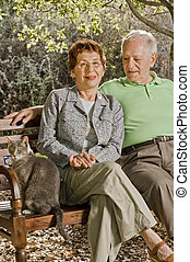 seniors on a bench - seniors couple sitting on a bench with...