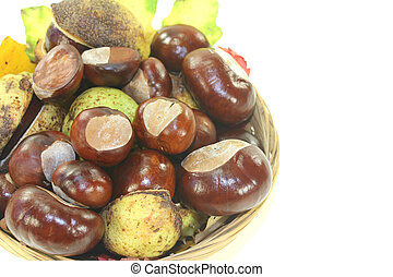horse chestnuts in a basket on a light background