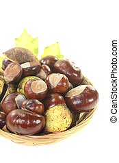 brown horse chestnuts in a basket on a bright background