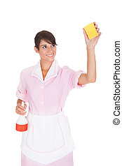Female Maid With Sponge And Bottle - Happy Female Maid...