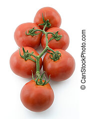tomatoes on branch
