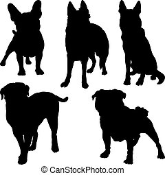 vector silhouettes of different breeds of dogs in various...