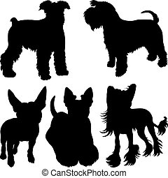 vector silhouettes of terrier dogs in the rack - set of...