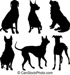 vector silhouettes of dogs in various poses - set of...