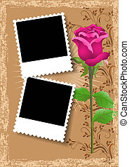 Photo frame and rose