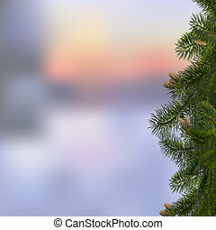 Branches of fir on winter background. Vector illustration